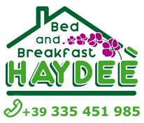 BB-Haydeè-logo-tel international